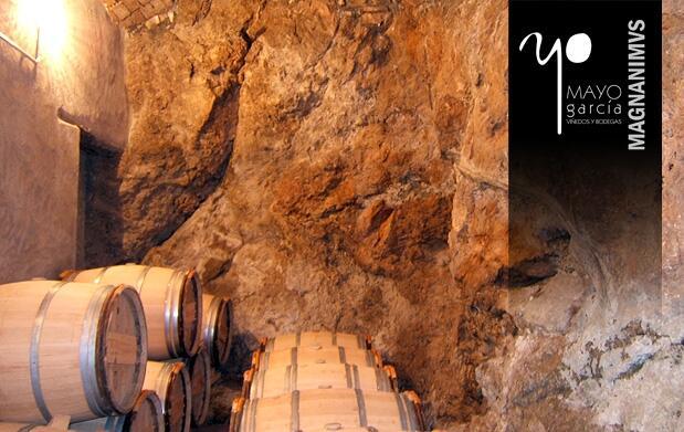 Apadrina una viña Magnanimvs