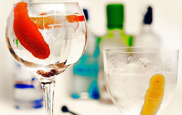 Curso de gin tonic con degustación