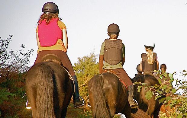 Curso de equitación en 3 sesiones de 1h