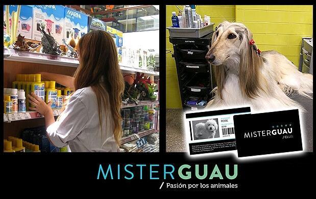 Tarjeta anual Club 5* de MisterGuau