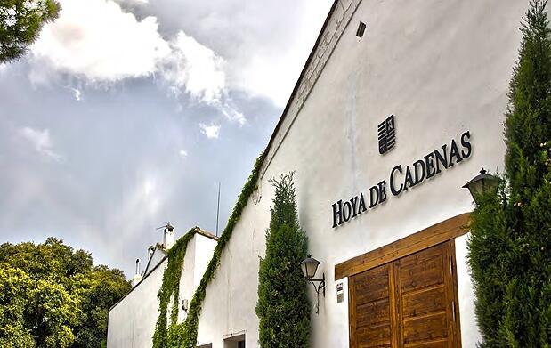 Visita a la bodega Hoya de Cadenas + cata