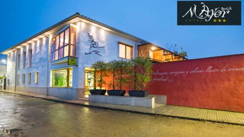 Escapada de 2 noches Canal de Castilla Hotel Doña Mayor 3*