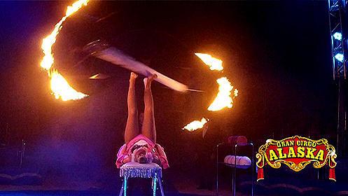 Entradas del Circo Alaska en Valencia (14 y 20 dic)